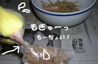 20070122202843.jpg