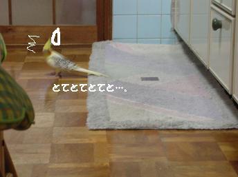 20070406215502.jpg