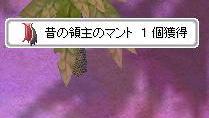 20070718184010.jpg