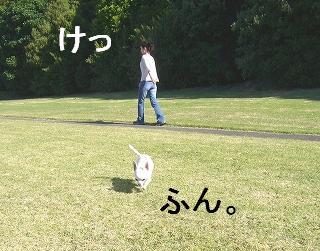 20060320094514.jpg