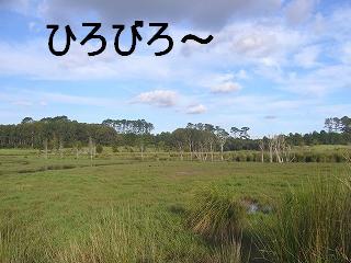 P1020068s-.jpg