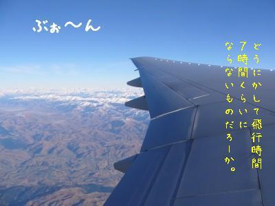 s-P1150550.jpg