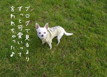s-P1170801.jpg