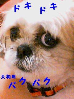 20070610133212.jpg
