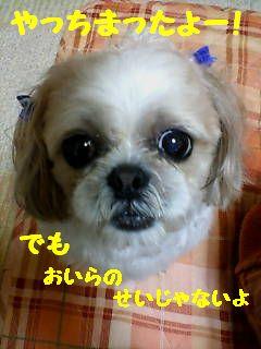 20070613202139.jpg