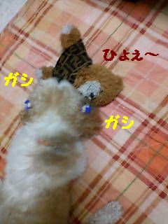 20070629191012.jpg