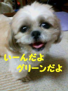 20070703220603.jpg