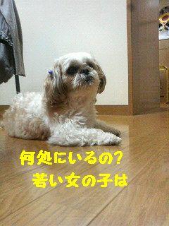 200707132014000.jpg