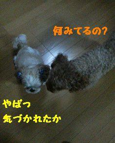 200709242140000.jpg