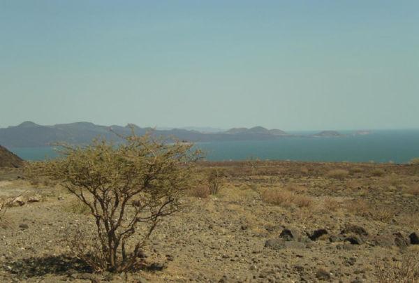 Turkana3