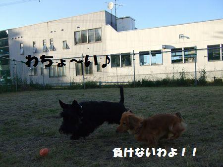 20070731223435.jpg