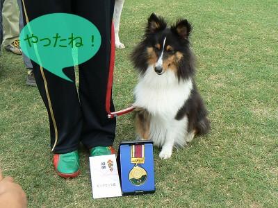 メダル&賞金