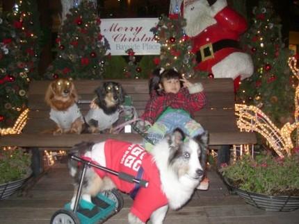 2005年クリスマス