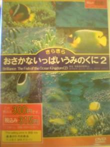 20060523215936.jpg