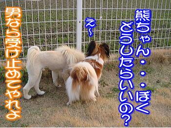 20070710111028.jpg