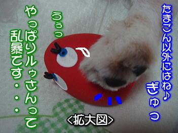 20070714000718.jpg