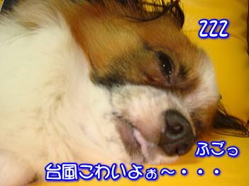 20070717172139.jpg