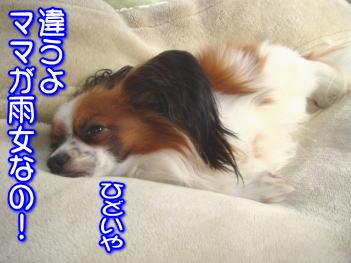 20070725144750.jpg
