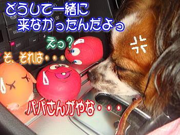20070802152812.jpg