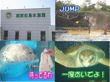 20070828000301.jpg