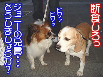 20070918203305.jpg