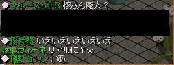 20051106231629.jpg
