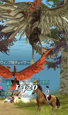 2006091503.jpg