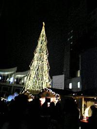 新梅田シティーのツリー