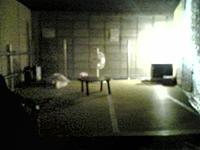 モンスターゲートの控え室