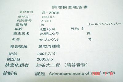 060214_08_shindan.jpg