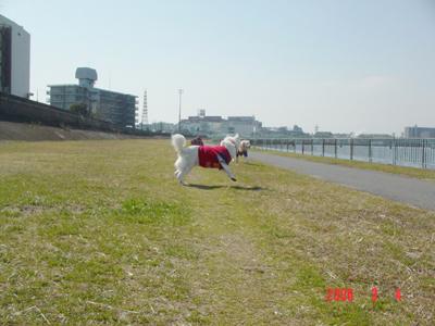 060304_02_hasiri.jpg