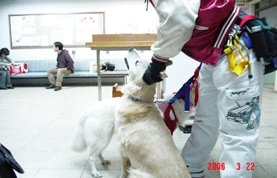 060322_02_hazimari.jpg
