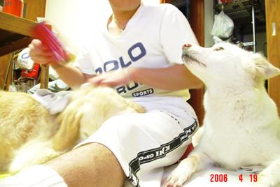 060419_09_05_yoko.jpg