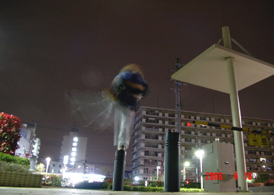 060419_10_06_yoko.jpg