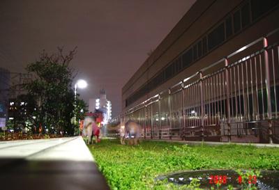 060423_02_02_yoko.jpg