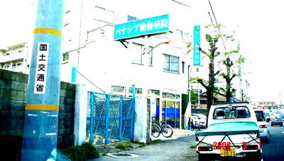 060501_panasia_04.jpg