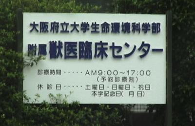 060710_aoki-02_01.jpg