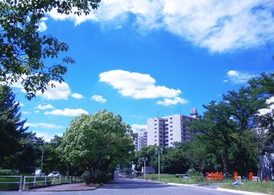 060808_01_ikishi_02.jpg