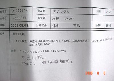 060808_04_kaeri_03.jpg