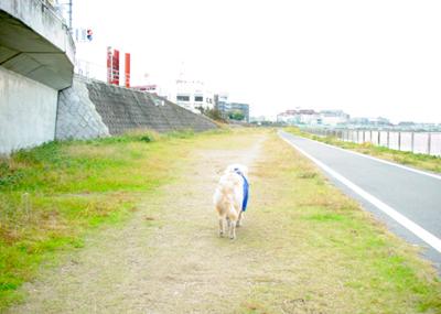061115_11_furo_04.jpg