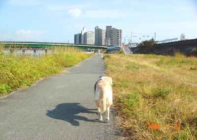 061121_01_kensa_02.jpg