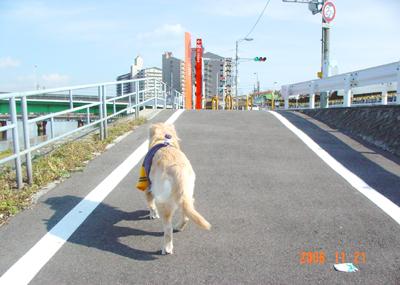061121_01_kensa_07.jpg