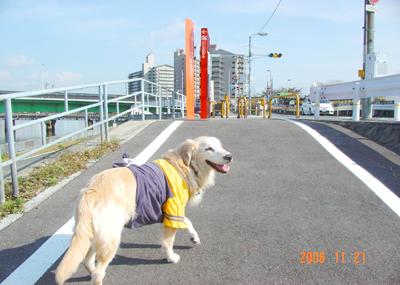 061121_01_kensa_08.jpg