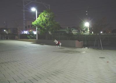 061130_04_mukosanpo_03.jpg