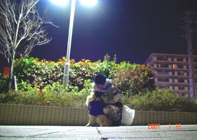 070112_sg_01.jpg