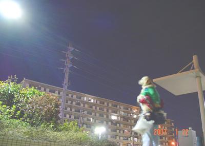 070121_yonaka_01.jpg