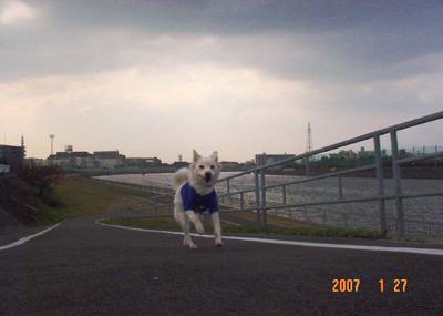 070127_01_sanpo_04.jpg