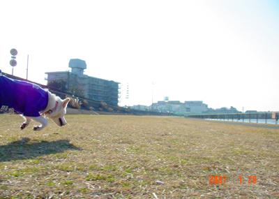 070129_hiruma_09.jpg