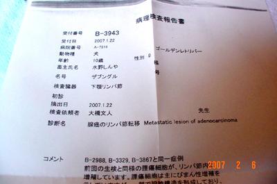 070206_bashi_12.jpg