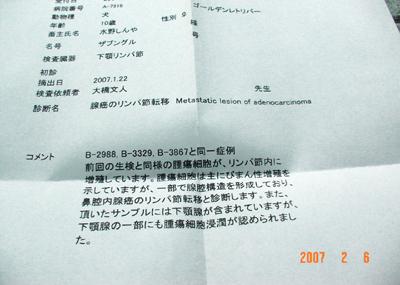 070206_bashi_13.jpg